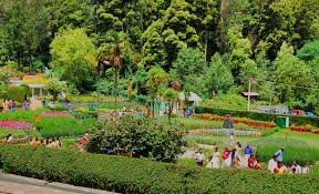 ooty hills tourist packages